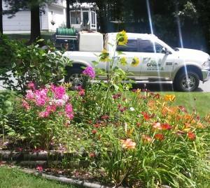 Bio Green of Upstate NY